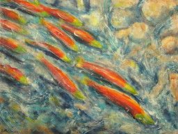 Adams River Salmon art