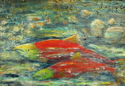 Adams River sockeye salmon art